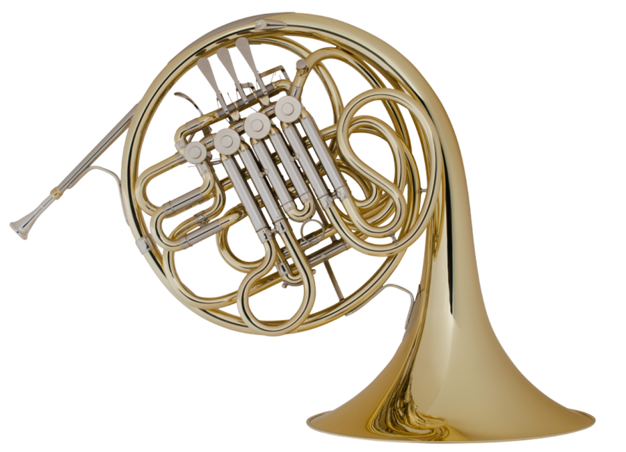 6D French Horn